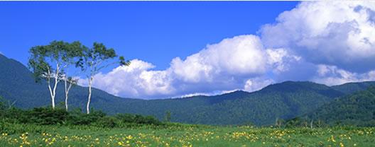 武蔵ABゼミ 学習塾|受験|英会話|国分寺|西国分寺|塾